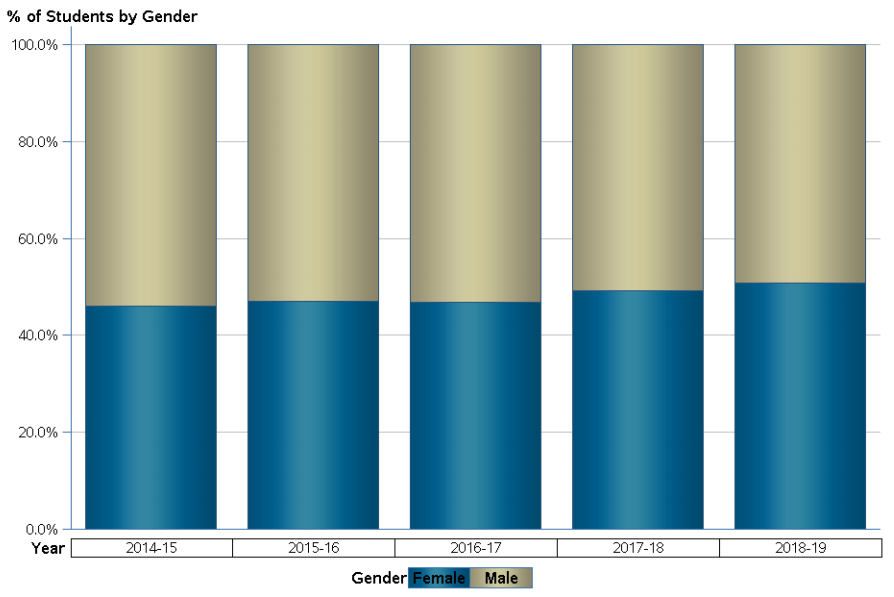 Englewood High Percentage of students according to gender